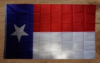 "Amerikaanse Staten vlag  "" Texas ""  UITVERKOCHT"