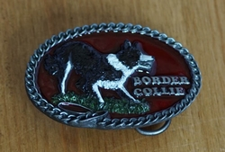 "Riem buckle  "" Border collie """