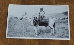 """Ansicht kaart  """" Indiaan op paard in de heuvels  """""""
