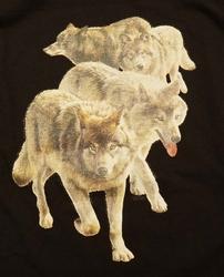 """T shirt """"  Wolven in de wolken """"  Zwart"""