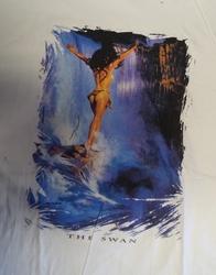 """T shirt """"  The swan,   Indiaanse bij waterval  """"  Wit"""
