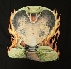 """T-shirt """" Aanvallende cobra """" Zwart"""