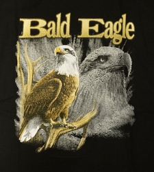 "T-shirt "" Bald Eagle "" Zwart"