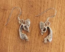 Sterling zilveren indiaanse oorbellen