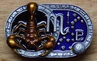 Sterrenbeelden / astrologie buckles