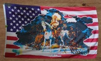 USA vlaggen